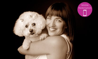 $49 One-Hour Pet Photo Shoot with $500 Credit at Viva Life Photography, Six Locations ($750 Value)