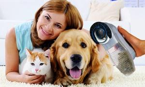 Aspirateur-brosse poil chien/chat