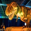 """Discover the Dinosaurs"" – Up to 40% Off Interactive Exhibit"