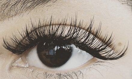a69a7c2ba8b Illinois Eyelash Extensions - Deals & Coupons in Illinois   Groupon