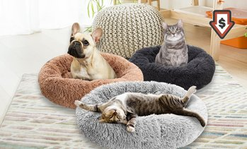 Doughnut-Shaped Pet Calming Bed
