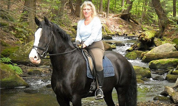 Carousel Horse Farm - Carousel Horse Farm: Beginner Trail Ride for One or Two from Carousel Horse Farm (Up to 61% Off)