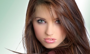 The Salon at Westchester, Inc.: Haircut, Root Touch-Up, or Half-Head of Highlights at The Salon at Westchester, Inc. (Up to 70% Off)