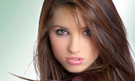 Haircut, Single-Process Color, or Partial Highlights at The Salon at Westchester, Inc. (Up to 70% Off)