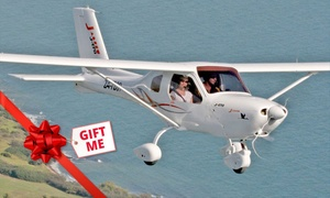 Gostner Aviation: Flying Lesson for 30-Minutes ($99) or One-Hour ($199) + $25 Landing Fee at Gostner Aviation (Up to $310 Value)