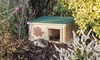 Endangered Hedgehog House