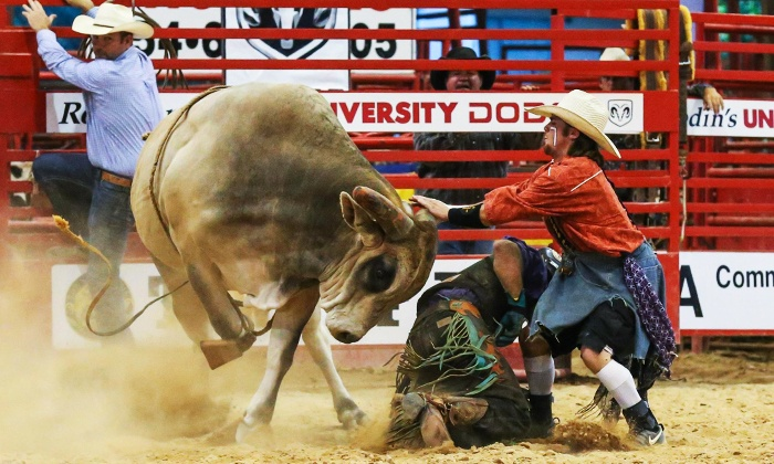 Southeastern Circuit Finals - Davie Pro Rodeo Arena: Southeastern Circuit Finals Rodeo on November 10 or 11 at 7:30 p.m.