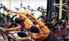 Life Cycle Pilates - Braeswood Place: 8 or 12 Barre or Spinning Classes, or One Month of Unlimited Classes at Life Cycle Pilates (Up to 81% Off)
