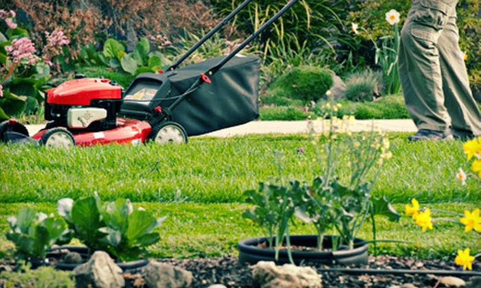 Evergreen Lawn Care of Gainesville Co. - Gainesville: $85 for Four Weeks of Lawn Mowing from Evergreen Lawn Care of Gainesville Co. ($170 Value)