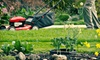 Evergreen Lawn Care of Gainesville Co.: $85 for Four Weeks of Lawn Mowing from Evergreen Lawn Care of Gainesville Co. ($170 Value)