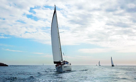Two Three-Hour Sailing Lessons for One or Two from Marina Sailing Newport Beach (Up to 59% Off)