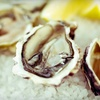 52% Off Seafood at Tom's Oyster Bar