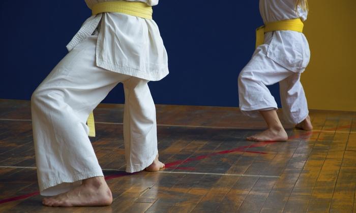 Findlay Martial Arts Academy - Findlay: $38 for $69 Worth of Martial-Arts Lessons — Findlay Martial Arts Academy