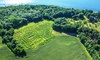 Fort Ticonderoga - Ticonderoga: Visit to Fort Ticonderoga Including Corn-Maze Admission for Two or Four (up to 44% Off)
