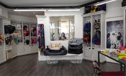 Toilettage complet pour chiens toys, nains et moyens ou grands chiens dès 29,90 € chez Nina Dalle Toilettage