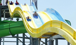 Up to 44% Off Admission at Andy Alligator's Water Park at Andy Alligator's Water Park, plus 6.0% Cash Back from Ebates.