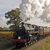 Railway Steam Train Ticket