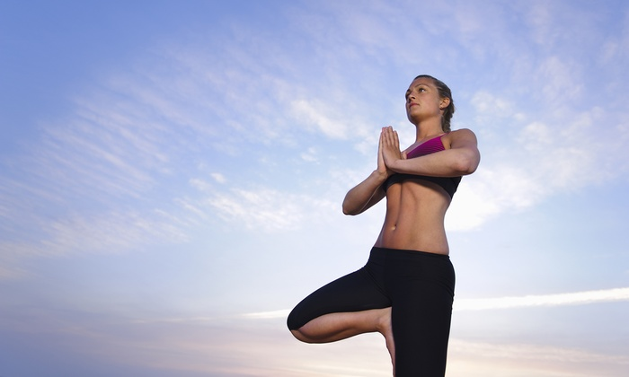 Nature Yoga at Montrose - Montrose Beach: 20 Beach Yoga Classes or Unlimited Season Pass to Nature Yoga at Montrose (Up to 75% Off)