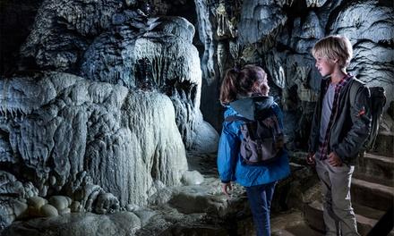1 PassHan pour 1 personne à la Grotte de Han avec accès au Parc Animalier, PrehistoHan et Han1900