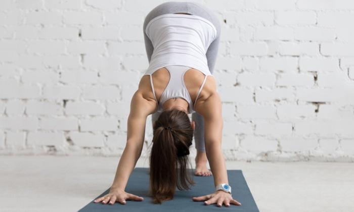 Yoga Vitalis - Köln: 5er- oder 10er- Karte à 90 Min. bei Yoga  Vitalis (bis zu 68% sparen*)