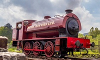 Steam Train Tickets for Two Adults or a Family of Five to Pontypool and Blaenavon Railway (40% Off)