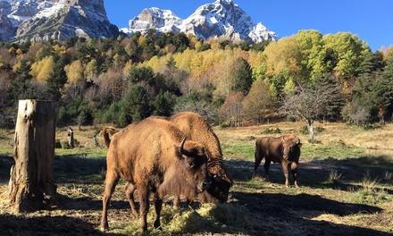 """Entrada al parque faunístico """"Lacuniacha"""" para adulto y/o niño desde 12 € en Huesca"""