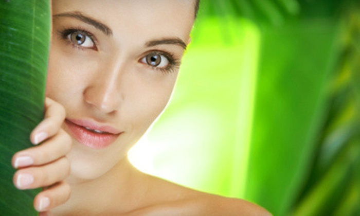 Clarice's Creating Beautiful Looks - Center: One or Three Clarice's Complete Facials from Bea at Clarice's Creating Beautiful Looks in Wheaton (Up to 56% Off)