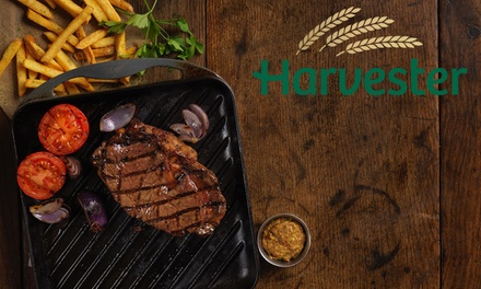 TwoCourse Steak, Ribs or Chicken Meal for Two at Harvester, Nationwide