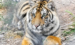 Parc Zoologique de Frejus: 1 entrée enfant (de 3 à 9 ans) ou adulte dès 9,90 € au Parc Zoologique de Fréjus