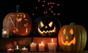 Pumpkin Nights: Pumpkin Nights Halloween Art Festival (October 14–31)