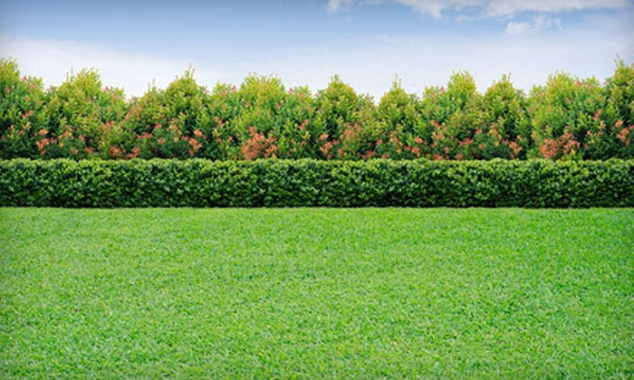 Lush Green Lawn - Woodside: Two or Four Mowings for Up to 10,000 or 20,000 Square Feet of Lawn from Lush Green Lawn (Up to 65% Off)