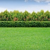 Up to 65% Off Lawn Mowing