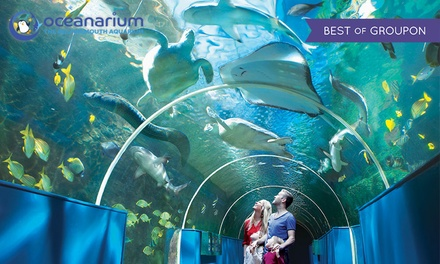Oceanarium Entry for a Child or Adult, or a Family of Up to Six
