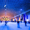 Up to 54% Off Fifth Third Bank Winter WonderFest at Navy Pier