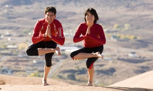 5 Elements - Międzynarodowa Szoła Jogi i Ruchu: Karnet open na jogę z nauczycielem z Indii: miesięczny za 99,99 zł w 5 Elements - Międzynarodowej Szole Jogi i Ruchu