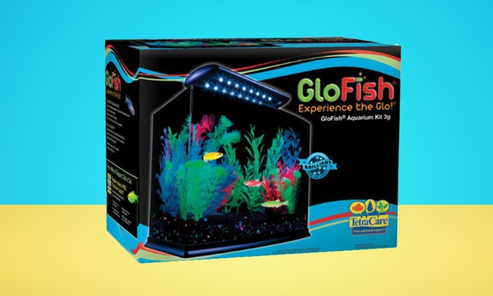 GloFish 3 Gal. Aquarium Kit: GloFish 3 Gal. Aquarium Kit. Free Shipping and Returns.