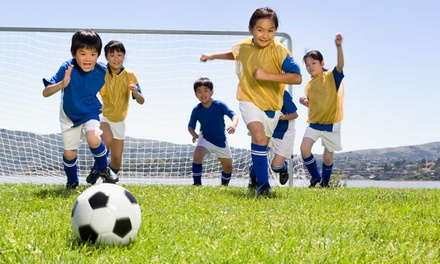 5-Days of Half or Full Day of Summer Soccer Camp from FC Pride Soccer Club (Up to 35% Off)
