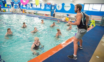 $29 for Three-Month Unlimited Aquafit Classes at Blue Dolphin Swim Centre (Up to $384 Value)