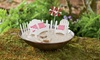 Miniature Fairy Beach Garden Set: Miniature Fairy Beach Garden Set