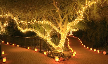 String of 50 or 100 LED Solar-Powered Fairy Lights from £4.99 (Up to 69% Off)