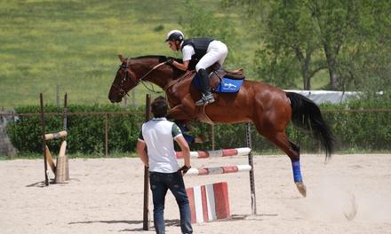 1 o 3 meses de clases de equitación para una o dos personas desde 29,90 € en Las Dos Ces