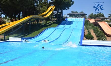 1 entrada de 1 día de lunes a viernes al parque acuático Guadalpark Sevilla