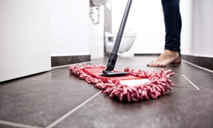 Al Ramlah Cleaning & Pest Control Services: Up to Six Hours of Cleaning from Al Ramlah Cleaning & Pest Control Services (Up to 53% Off)