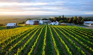 Vignoble et cidrerie Coteau Rougemont: Discovery Experience for Two, Four or Six at Vignoble et Cidrerie Coteau Rougemont (Up to 67% Off)