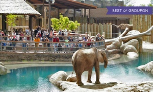 Visit Salt Lake: 365-Day Connect Pass  for 13 Attractions Including Zoos, Museums, and More from Visit Salt Lake (Up to 14% Off)