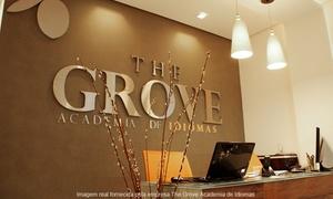 The Grove Academia de Idiomas: The Grove – Centro:1 mês de aulas particulares de inglês via Skype com 1 ou 2 aulas por semana