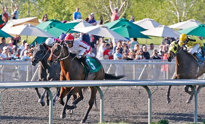 image for Emerald Downs: Horse-Racing Package with Program and Food and Beverage Voucher (Through September 23)