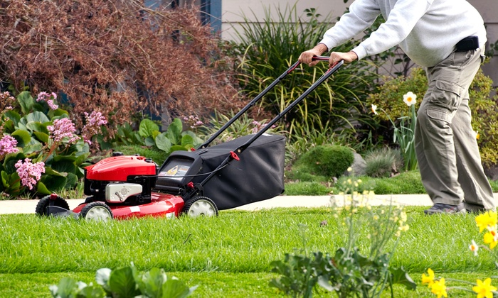 Herbert Lawncare & Landscaping - Murfreesboro: Spring Yard Cleanup or Lawn-Care Package from Herbert Lawncare & Landscaping (Up to 59% Off)