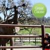 $10 Donation to Wildlife Safari