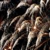 $50 Towards Fireworks at Fireworks Direct